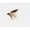 мухи английски мокри
